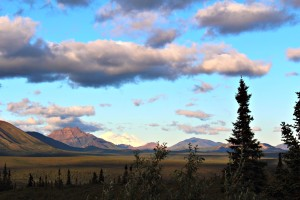 Denali National Park: one of my first photographs of Denali