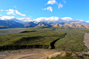 Denali National Park: tundra and Alaska Range